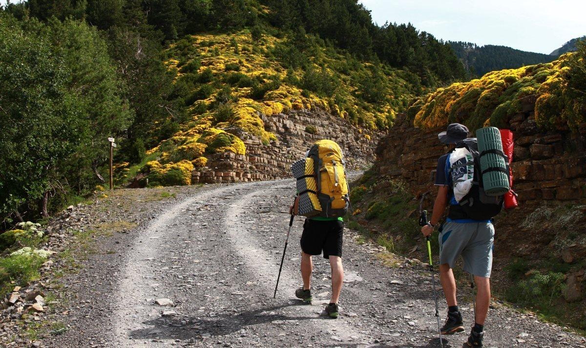 Как правильно выбрать туристический рюкзак для путешествий - фото