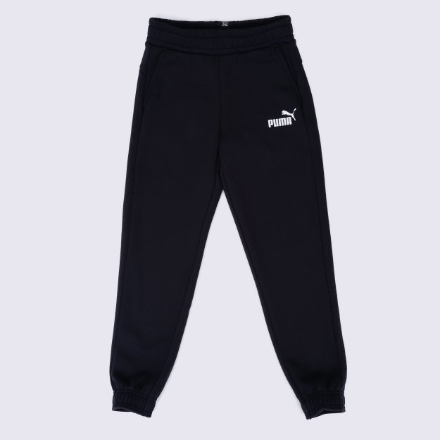 Спортивнi штани Puma Essentials Sweat Pants - 112031, фото 1 - інтернет-магазин MEGASPORT
