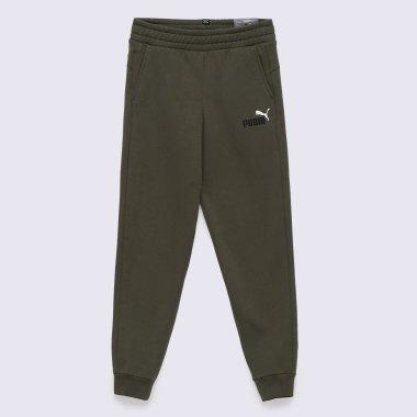 Спортивные штаны puma Ess, 2 Col Logo Pants Fl Cl B - 140612, фото 1 - интернет-магазин MEGASPORT