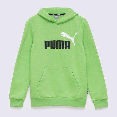 Кофты puma Ess, 2 Col Big Logo Hoodie Fl B - 140611, фото 1 - интернет-магазин MEGASPORT