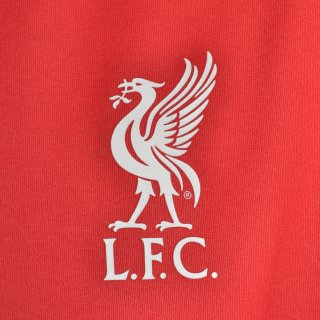 Кофта New Balance Lfc Training Sweat - фото 3